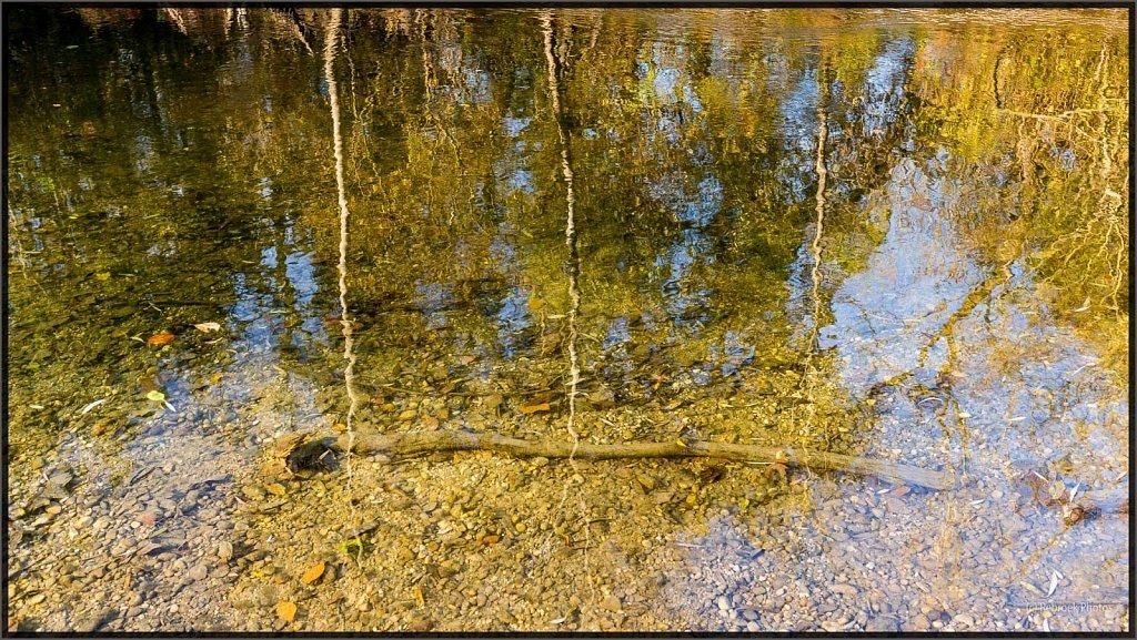 Herbst2-23.jpg