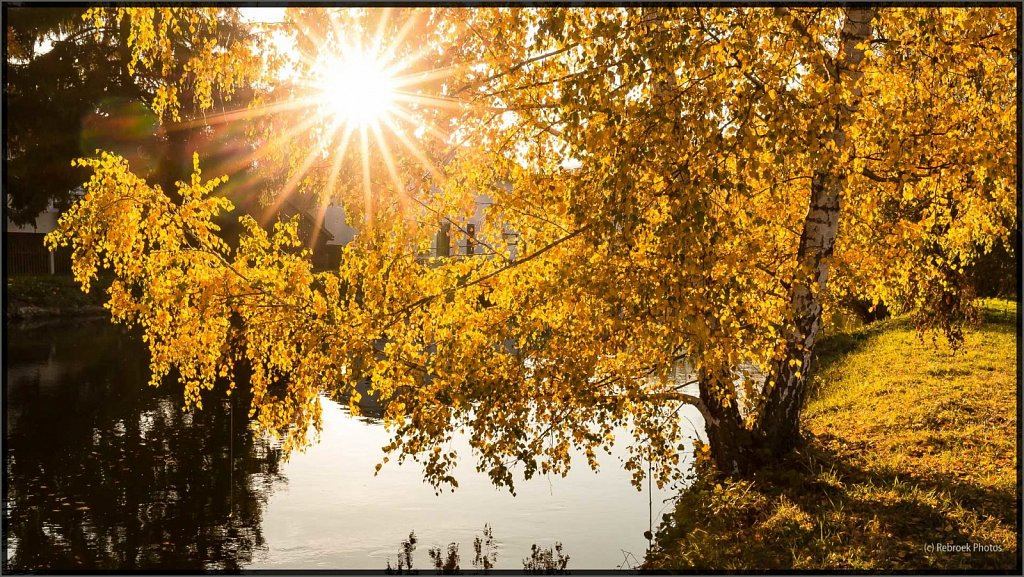 Herbst2-26.jpg