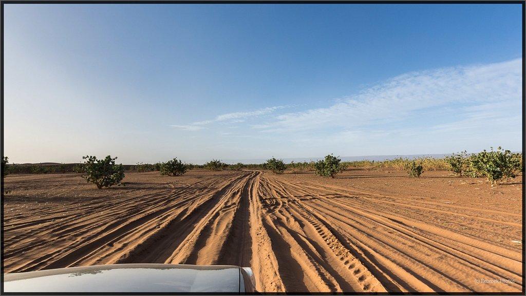 Landschaft-26.jpg
