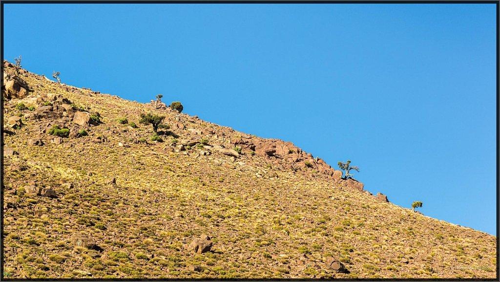 Landschaft-33.jpg