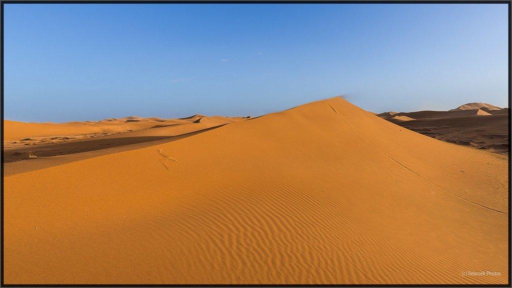 Sahara-Sunset-20.jpg