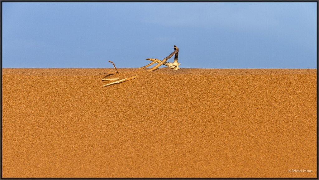 Sahara-Sunset-21.jpg