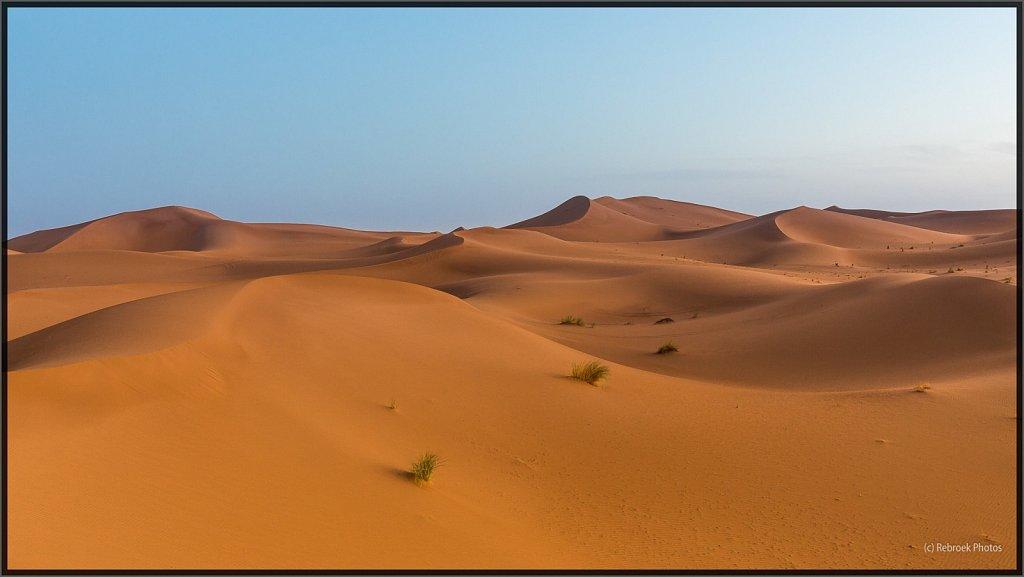 Sahara-Sunset-25.jpg