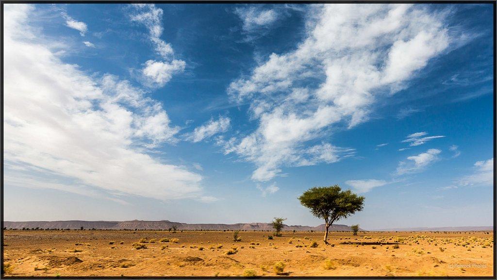 Sahara-Sunset-14.jpg