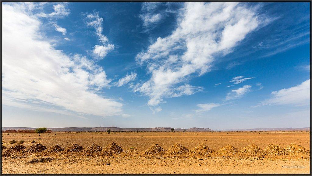 Sahara-Sunset-15.jpg