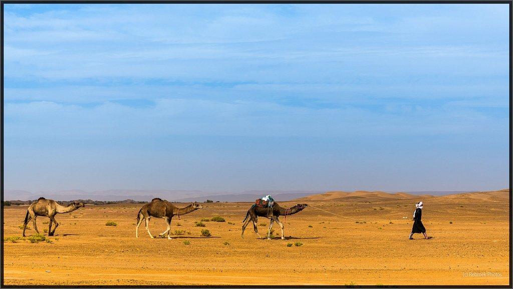 Sahara-Sunset-16.jpg