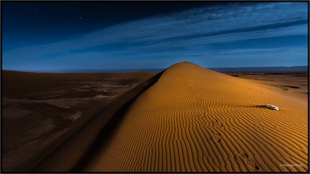 Sahara-Night-15.jpg