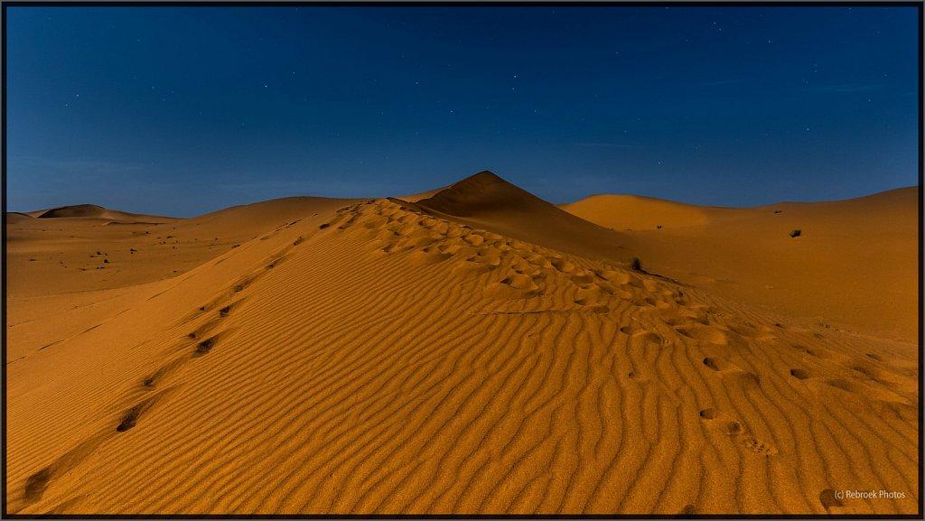 Sahara-Night-16.jpg