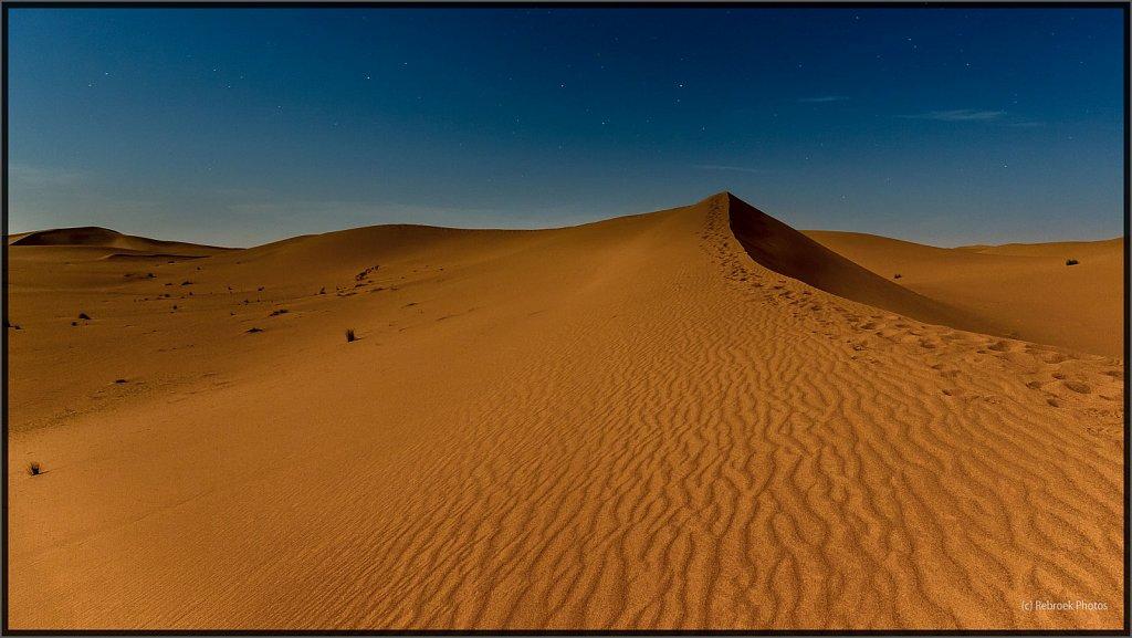 Sahara-Night-17.jpg