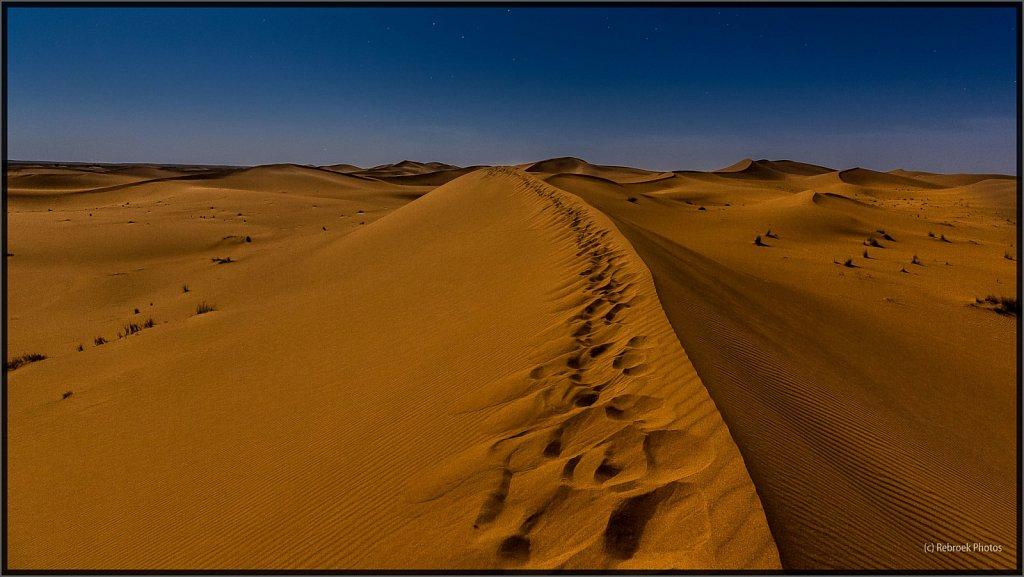 Sahara-Night-19.jpg