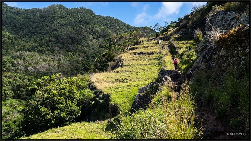 Madeira-15.jpg