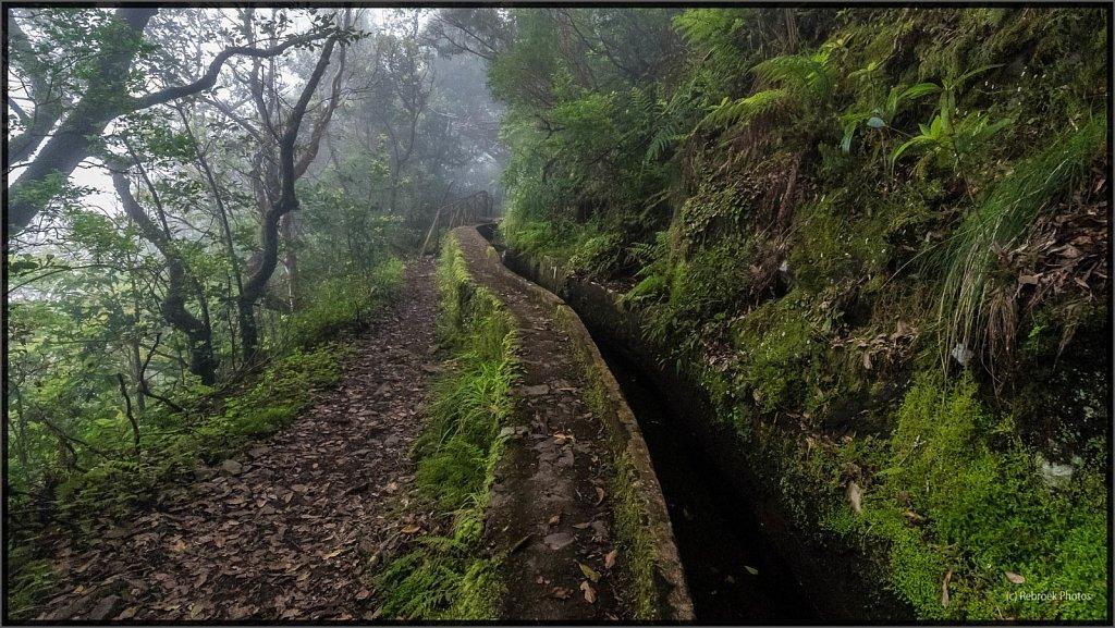 Madeira-38.jpg