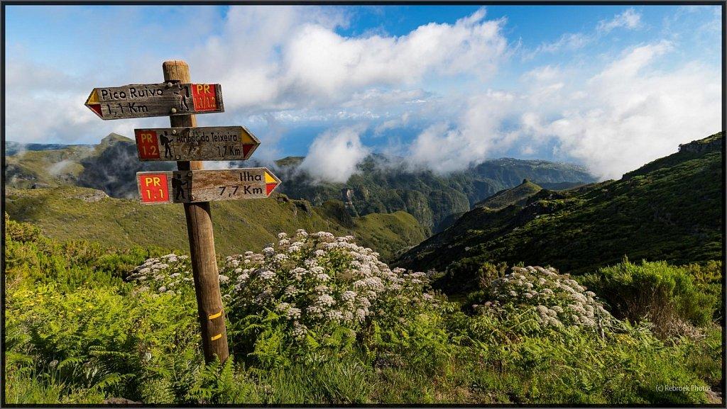 Madeira-49.jpg