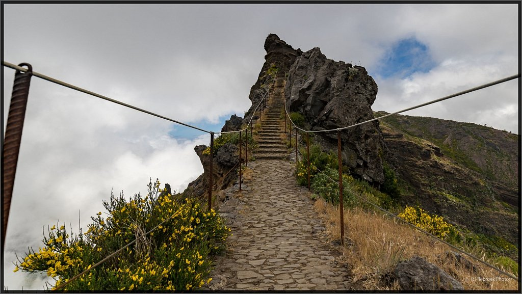 Madeira-58.jpg
