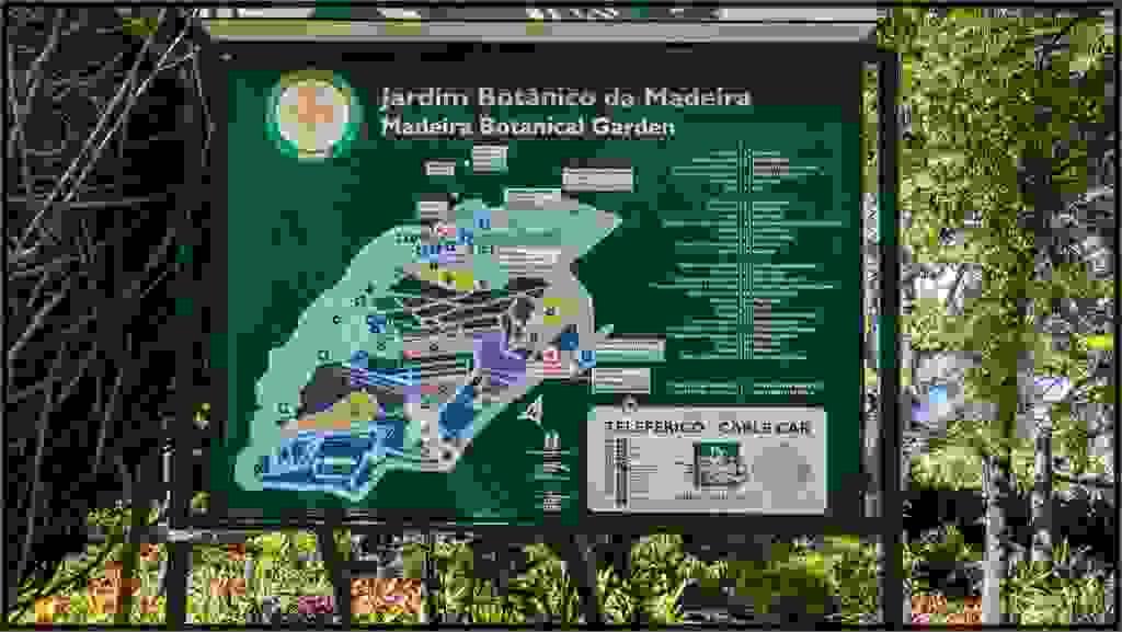 Madeira-81.jpg