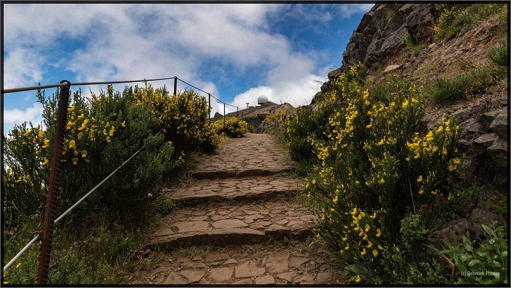Madeira-60.jpg