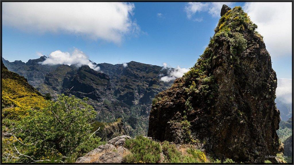 Madeira-65.jpg