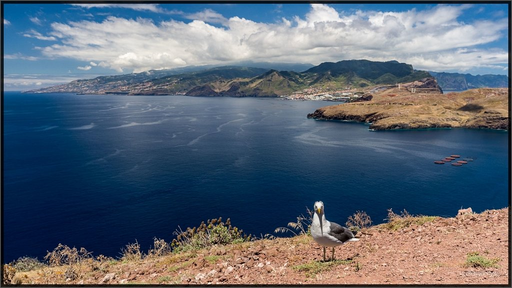 Madeira-78.jpg